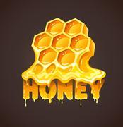 Honey in honeycombs Stock Illustration