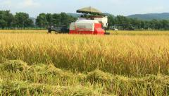 Farmers harvesting rice in the fields by machine,  Asia Stock Footage