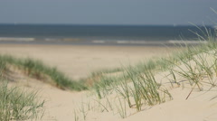 Unspoiled dunes and beach Stock Footage