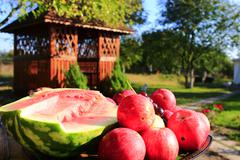 Red apples and cut water-melon on the arbor background Stock Photos