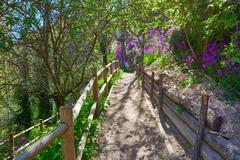 Cuenca spring forest in Canete wooden fence Stock Photos