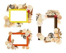 Empty frame decorated with seashells - stock photo
