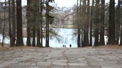 Romantic Couple Walking Through Autumn Woodland Stock Footage