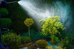 Home Garden Spring Works. Pest Control Spraying. - stock photo