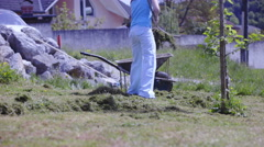 Stock Video Footage of Person raking and loading grass in to wheelbarrow 4K