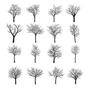 Trees with dead branch Stock Illustration