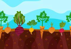 Stock Illustration of Growing Vegetables Illustration