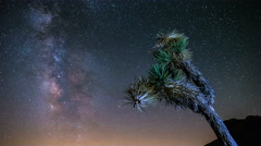 4K Milky Way Time-lapse Joshua Tree National Park Stock Footage