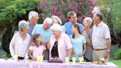 Large Family Group Celebrating Birthday Outdoors Stock Footage