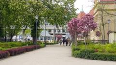 Sopot, Poland - city park Stock Footage