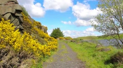 At the Lily Loch in Spring, North Lanarkshire, Scotland Stock Footage