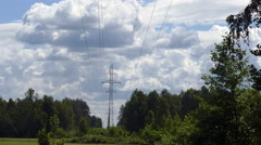 Stock Video Footage of Power line in a swampy forest in the summer UHD