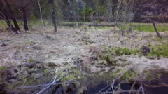 Aerial View. Flight Over Swamps Stock Footage