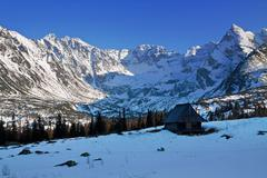 Mountain snowy landscape with wooden house shelter in Zakopane Stock Photos