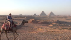 Young Man Riding a Camel Near the Pyramids of Giza Stock Footage