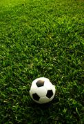 Football green grass ball stadiun football field game sport background for de Stock Photos
