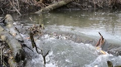 Strong current at a small river. Stock Footage