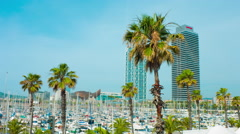 Palm trees and yachts in Port Olimpic Barcelona Stock Footage