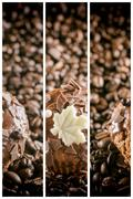 Set of abstract coffee banners. Stock Photos