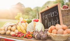 Table with locally grown vegetables - stock photo