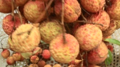 Litchi Stock Footage