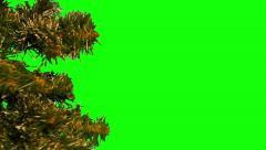 Christmas tree 13 Stock Footage
