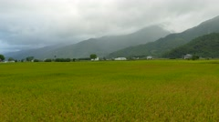 The beauty of the farmland in Taitung Taiwan for adv or others purpose use Stock Footage