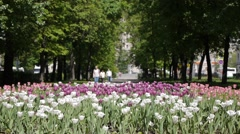MOSCOW, RUSSIA MS People walking in square with flowers. This park is the Stock Footage