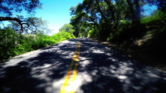 Driving down tree lined Rural Road POV - stock footage