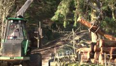 Log lifter handling trees - forestry 4 Stock Footage