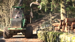 Log lifter handling trees - forestry 6 Stock Footage