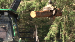 Log lifter handling trees - forestry 7 Stock Footage
