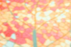 Abstract blurred natural background, pastel colors. - stock photo