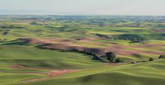 Wheat fields of Palouse wide pan Stock Footage