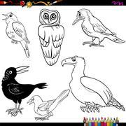 birds cartoon coloring page - stock illustration