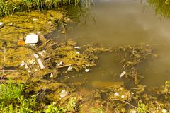 Pollution Filled Dirty Water Pond Stock Photos