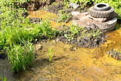 Dirty Swamp Water and Algae and Tyres Stock Photos