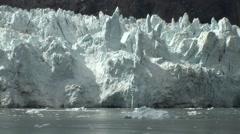 Glacier bay sea ice in Alaska Stock Footage