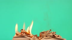 Laying burning book dolly shot chroma key 2 Stock Footage