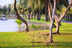 Landscaped Formal Garden. Park. - stock photo