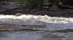 Rapids Raging Onward Stock Footage