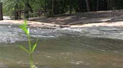Serene Stream and Rocks Stock Footage