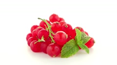 Red Currants Stock Footage