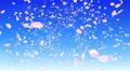 Sakura petals front 3 Ab 4K 4k or 4k+ Resolution
