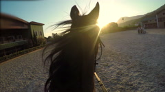 Horse jumping hurdle at sunset, point of view Stock Footage
