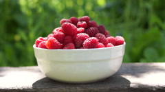 Stock Video Footage of Raspberries In A White Bowl, On A Wooden Bench