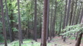 Hillside hiking pan mountain range forest Harz Ilsetal HD Footage