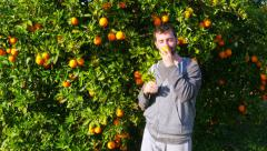 Gatherer picking orange from branch of tree - stock footage