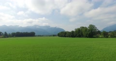 Meadow with alps in the background Stock Footage