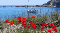 Tulips and yacht at blue voyage, knidos, datca, turkey Stock Footage